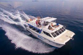 Day Cruise Catamaran