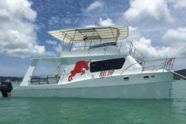 Power Catamaran Bullship
